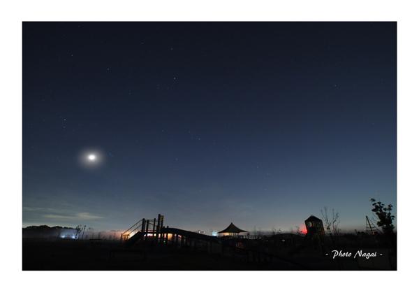 2015-12 夜の公園 大和市-12.jpg