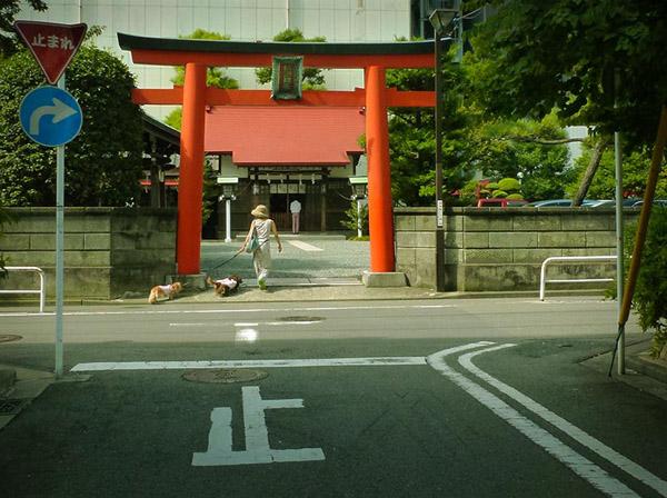 6月-お参り-横浜-1.jpg