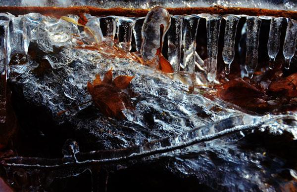凍1DSC_0715のコピー.jpg