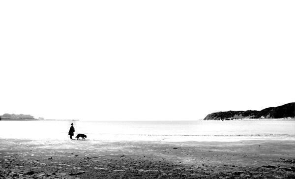 2016-02 海岸線(逗子)-1.jpg