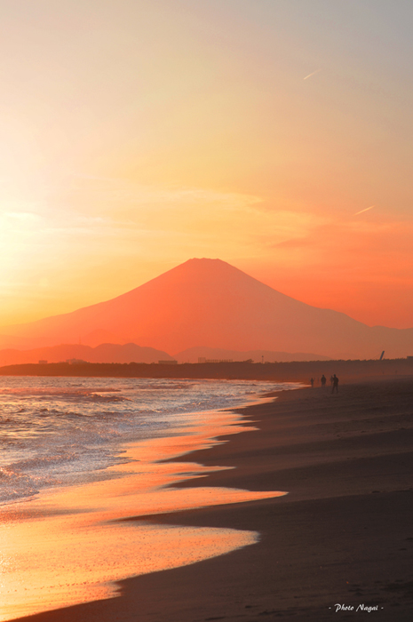 2016-4 富士山Ⅱ 藤沢市.jpg