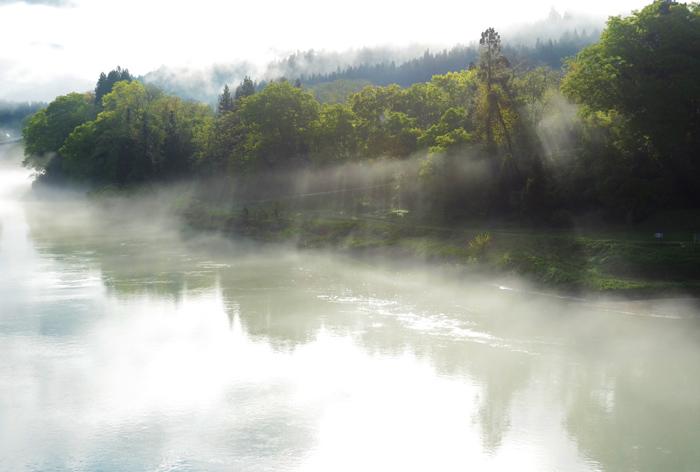 川霧のコピー.jpg