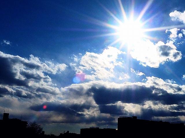 晴れの光.jpg