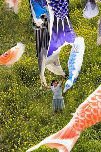 鯉のぼり1のコピー.jpg